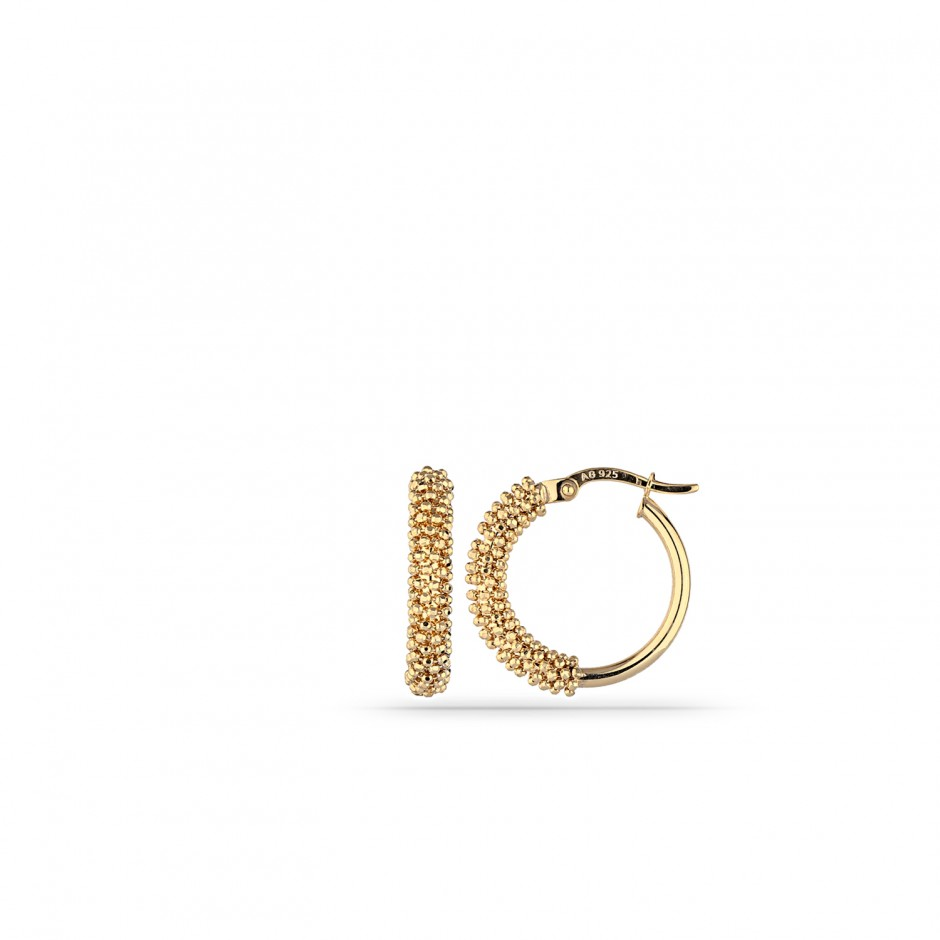 Gold-Plated Wrap Ring Silver Earrings